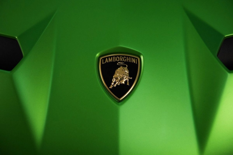 2011 - [Lamborghini] Aventador LP700-4 - Page 27 Ahoym810