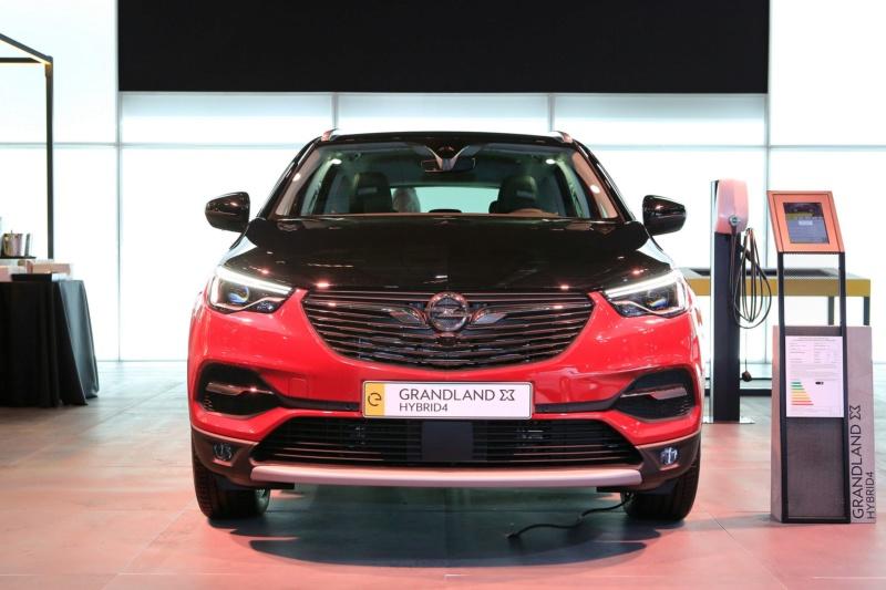 2017 - [Opel] Grandland X [P1UO] - Page 38 J110