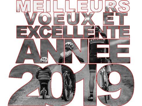 Meilleurs voeux pour cette nouvelle année Bonne-10