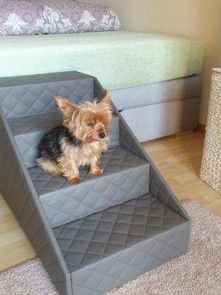 Hunde und Katzentreppen - hundetreppen 27442b11