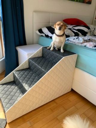 Hunde und Katzentreppen - hundetreppen 423bac11