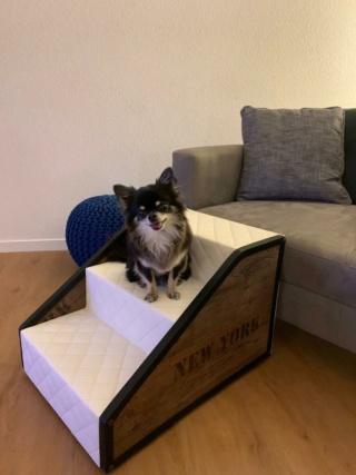 Hunde und Katzentreppen - hundetreppen 78250d10