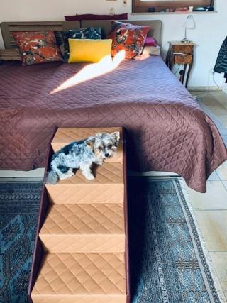 Hunde und Katzentreppen - hundetreppen 83871410