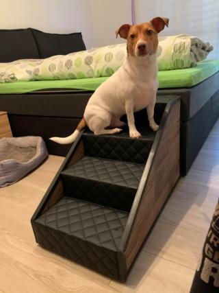 Hunde und Katzentreppen - hundetreppen 90094911
