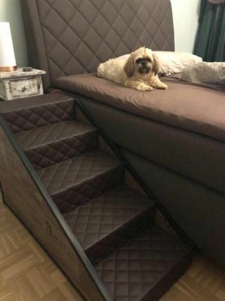 Hunde und Katzentreppen - hundetreppen Downlo10