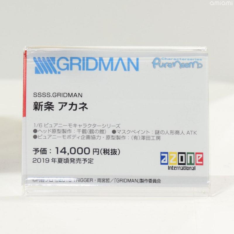 [Azone] Pure Neemo de Shinjou Akane et Takarada Rikka  [ SSSS Gridman ] Wf201912