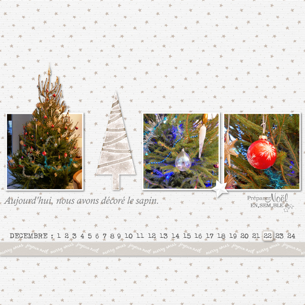Pages réalisées avec le Noël blanc de DCS 2018_111