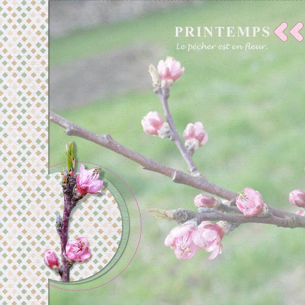 Pages réalisées avec les templates de mars 2019 2019_080