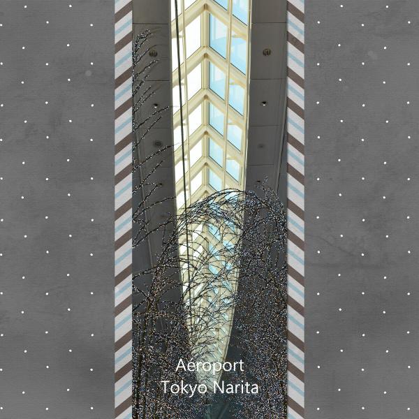 Challenge VISITEURS n°14 - Vertical Narita11