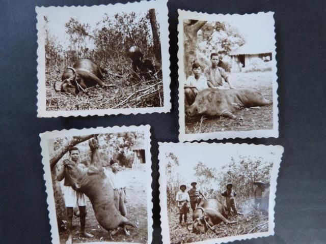 souvenirs d'Hanoï 1935 1936 (2) Parties de chasse et tourisme 22p12010