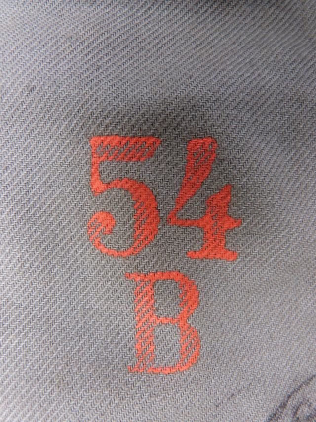 vareuse suisse P1210415