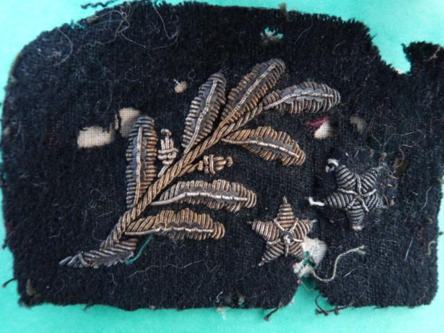 insigne palme et étoiles P1210539