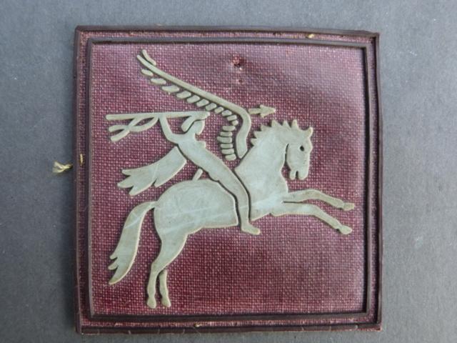 Insignes parachutistes P1210711