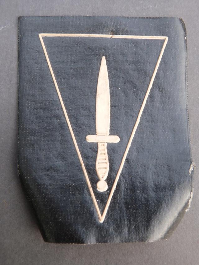 insignes commando belges P1210713