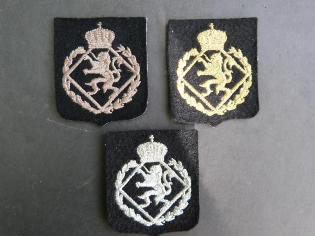 insignes belges ERM P1220215