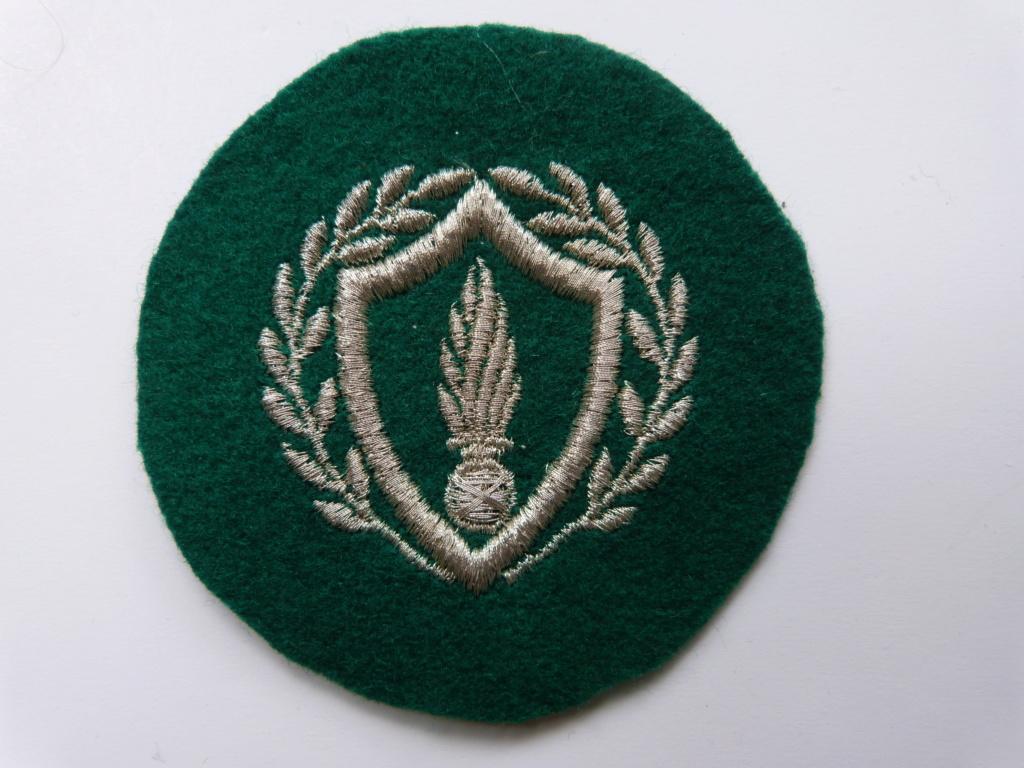 insigne vert avec grenade P1260310