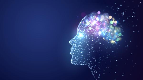 Cervello: 4 modi per mantenerlo efficiente e depurarlo dalle tossine 711bb610