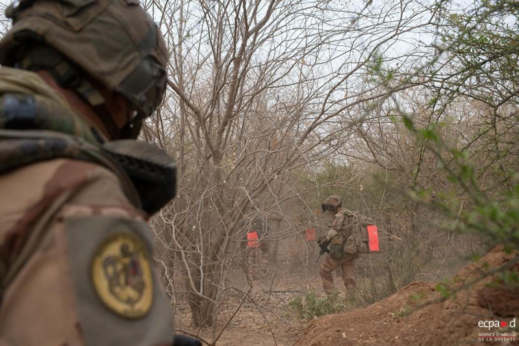 Opération Bourgou 1 - Fouilles dans la forêt de Foulsar 20190422