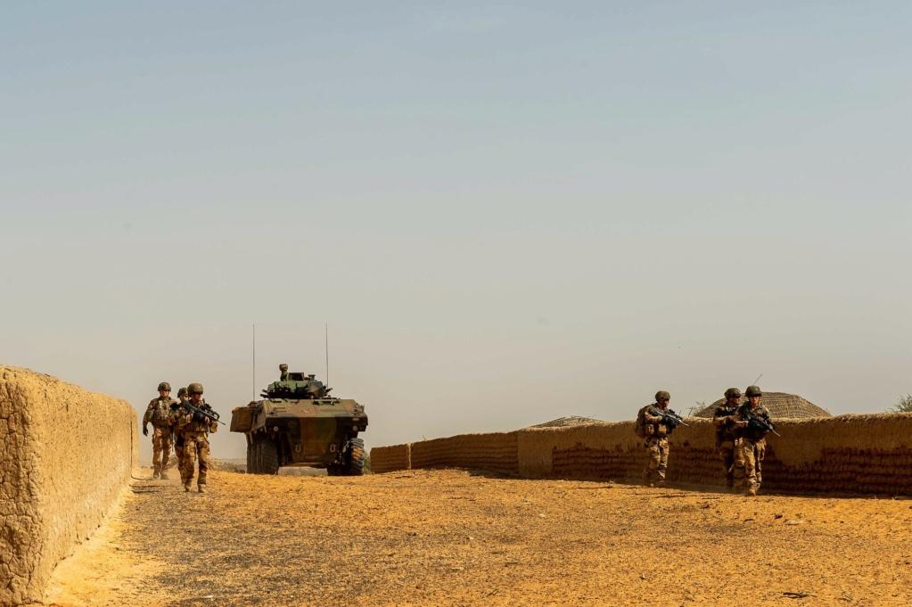 Opérations communes Barkhane - FAMa dans le Liptako 2019_t63