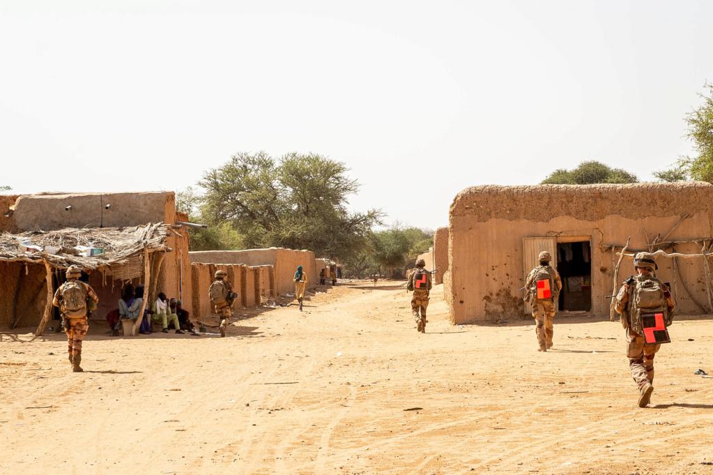 Opérations communes Barkhane - FAMa dans le Liptako 2019_t64