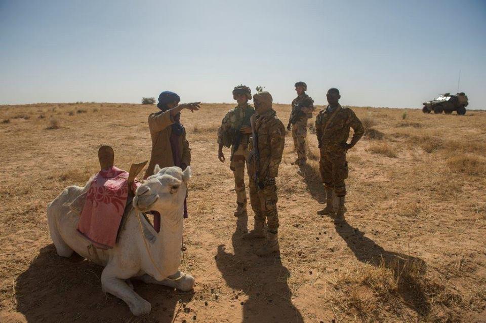 Immersion au sein du PRI du 3° RH au Sahel 50691510