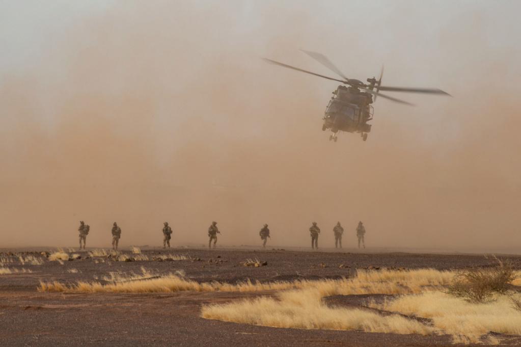 Un Caïman bloqué au sol 48 h dans le désert 512