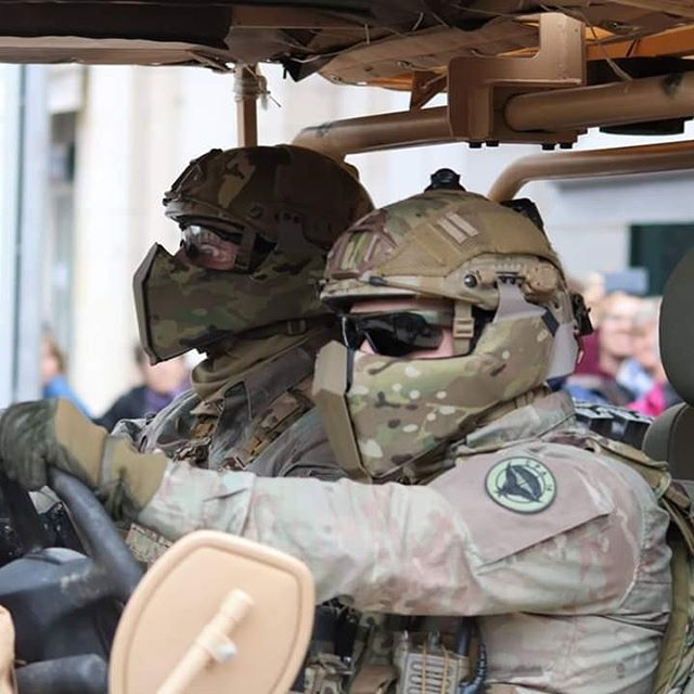 Défilé militaire 8 mai à Orléans 59650010