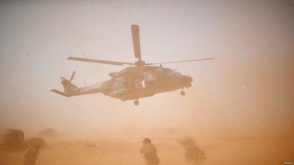 Un Caïman bloqué au sol 48 h dans le désert 66518d10