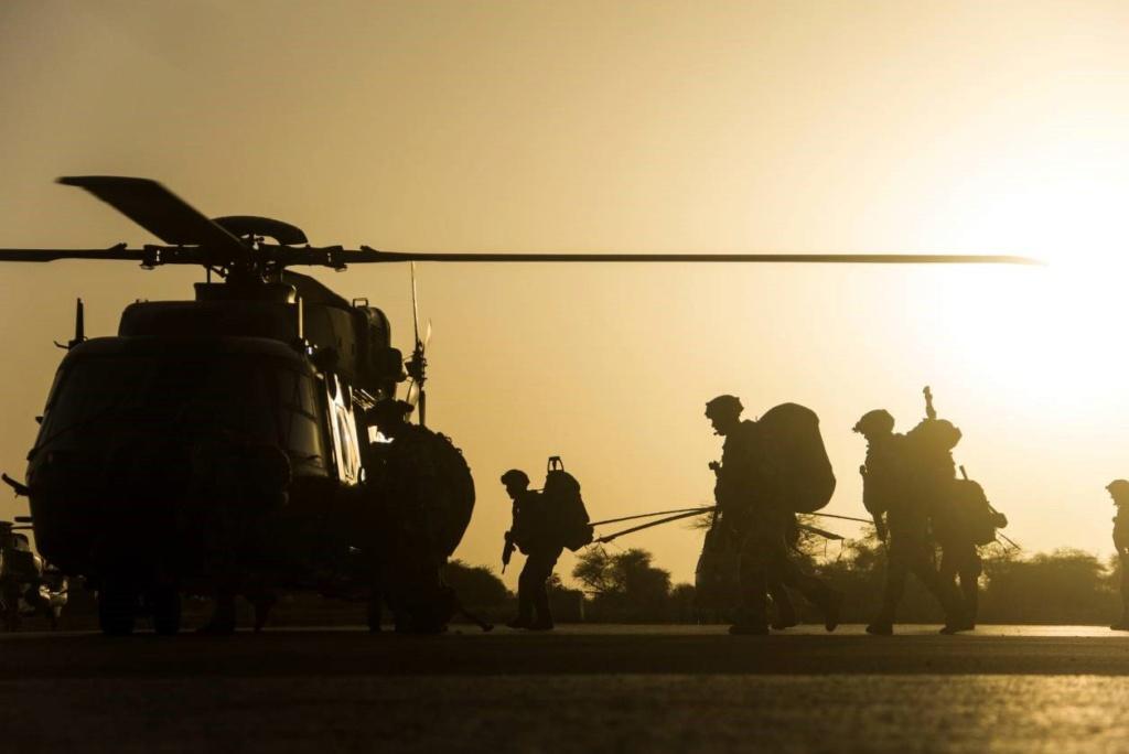 Encore une HVT * neutralisée au Sahel ! !  D0awho10