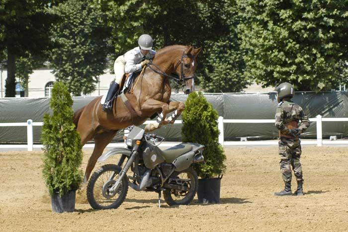Carrousel de Saumur 19 et 20 juillet 2019 D91dop10