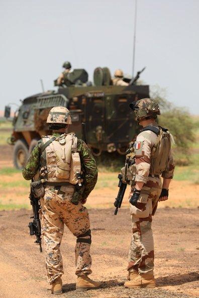 50 soldats estoniens auprès de la France au Mali Dmzd4a10