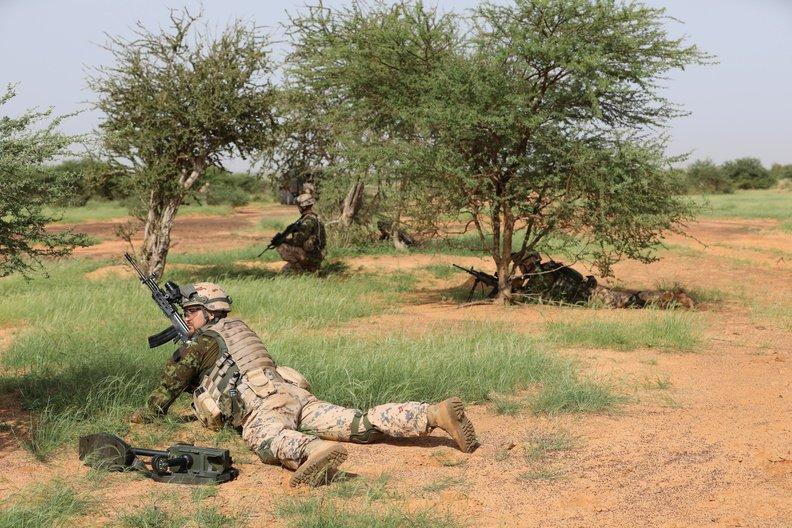 50 soldats estoniens auprès de la France au Mali Dmzd7k10
