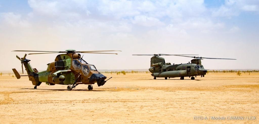 En décembre 2 hélicoptères lourds danois pour Barkhane Dnmue-10