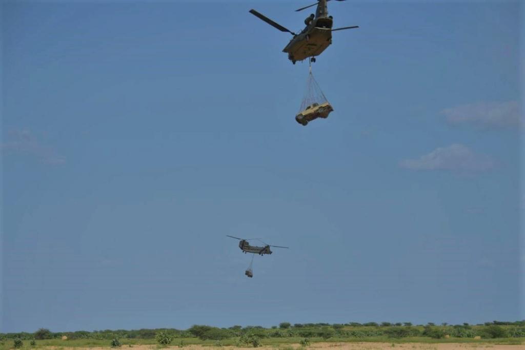 Des hélicos britanniques pour l'opération Barkhane au Sahel Dnw_wo10