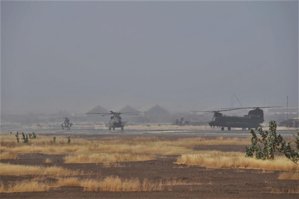 En décembre 2 hélicoptères lourds danois pour Barkhane Dsc_3511