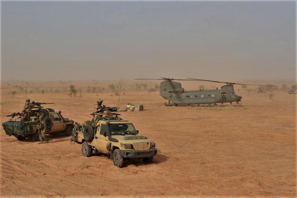 Las Fuerzas Aeromóviles del Ejército de Tierra à Barkhane ? Dsc_9010