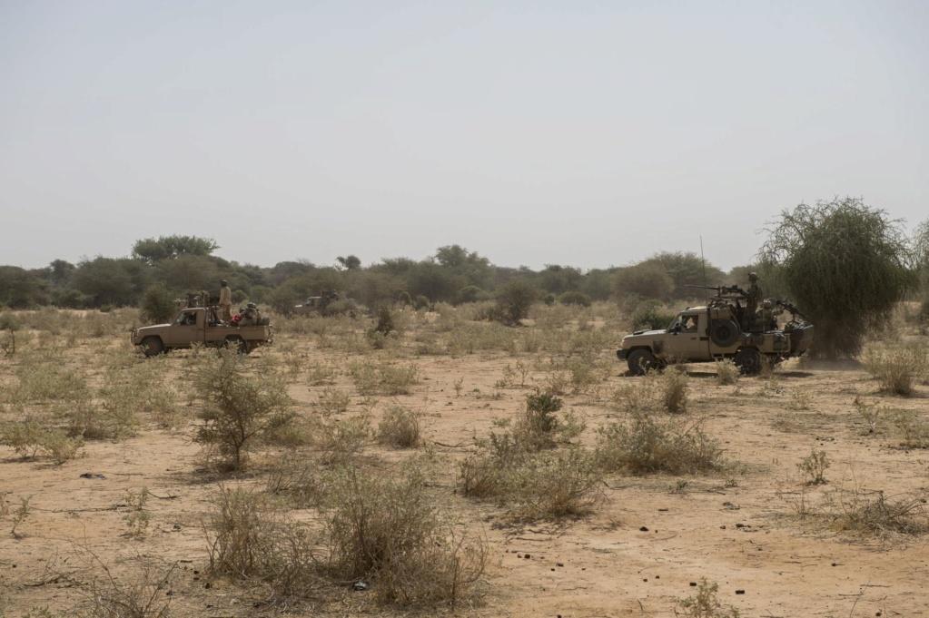 Barkhane frappe des positions jihadistes  Dvnb7k10