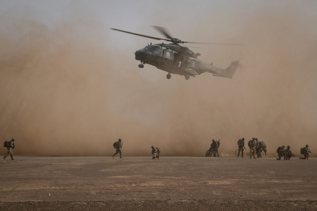 Un Caïman bloqué au sol 48 h dans le désert Dwly3j10
