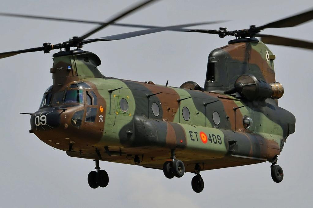 En décembre 2 hélicoptères lourds danois pour Barkhane E388f410