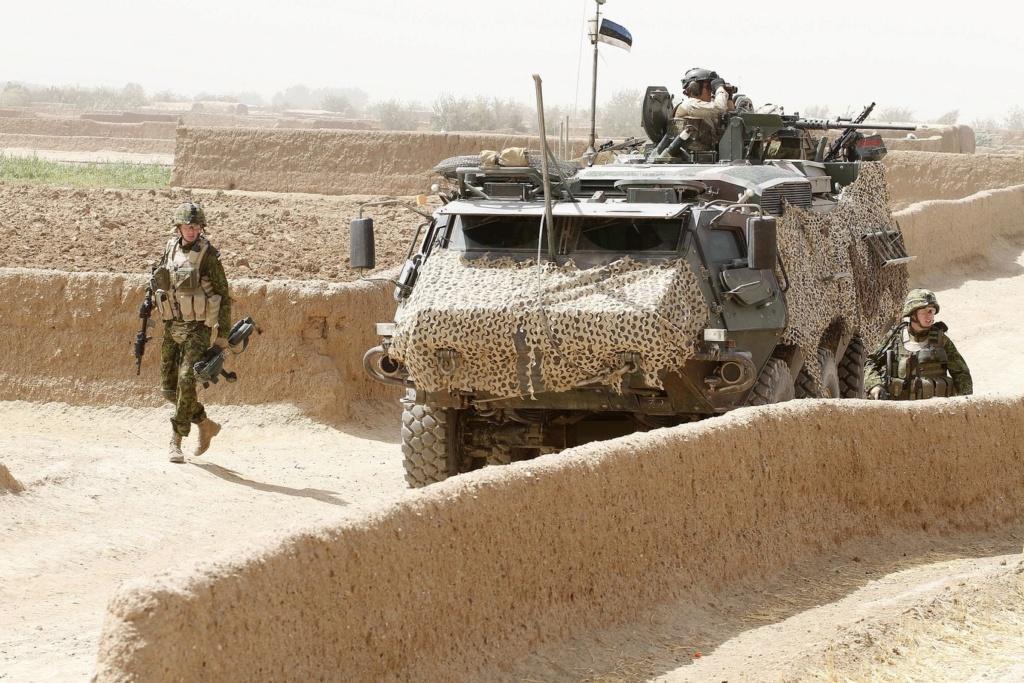 50 soldats estoniens auprès de la France au Mali Easteu10