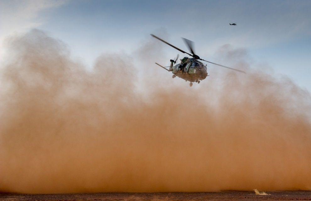 Un Caïman bloqué au sol 48 h dans le désert Eba81c10