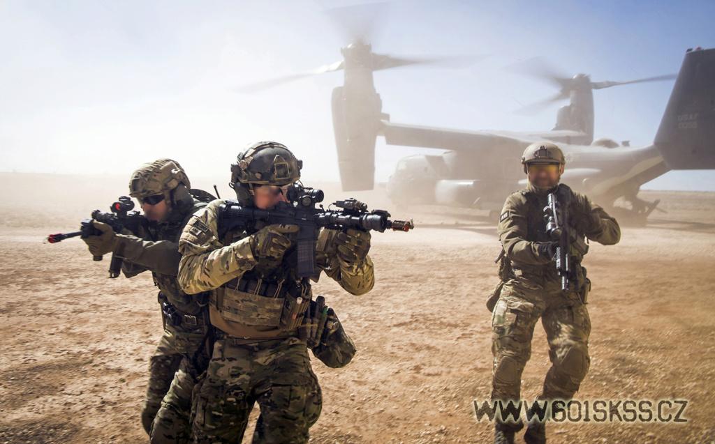 Des forces spéciales européennes pour « Takuba »  Emeral10