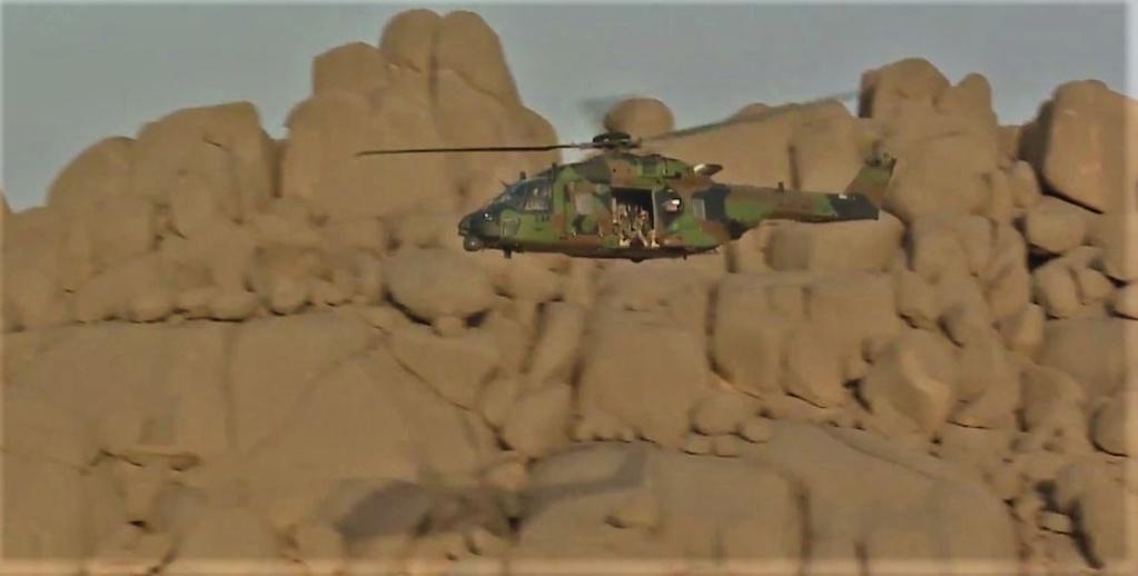 Un Caïman bloqué au sol 48 h dans le désert Ob_33810