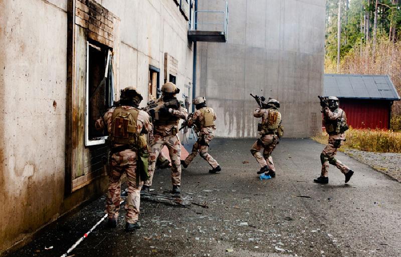 Des forces spéciales européennes pour « Takuba »  Swedis10