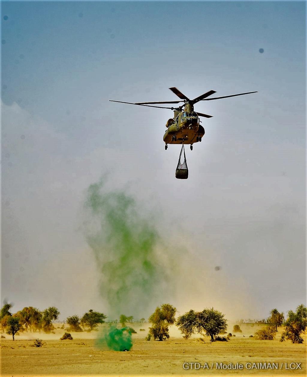 Des hélicos britanniques pour l'opération Barkhane au Sahel Tfmali10