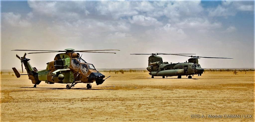 Des hélicos britanniques pour l'opération Barkhane au Sahel Tfmali11