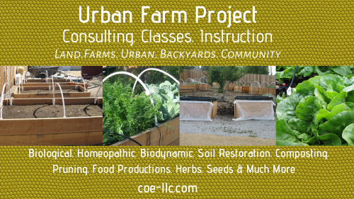 Reno: Holistic Animal Healthcare, Biodynamics, Nutrition, Herbalism: Urban Farm Project Small394