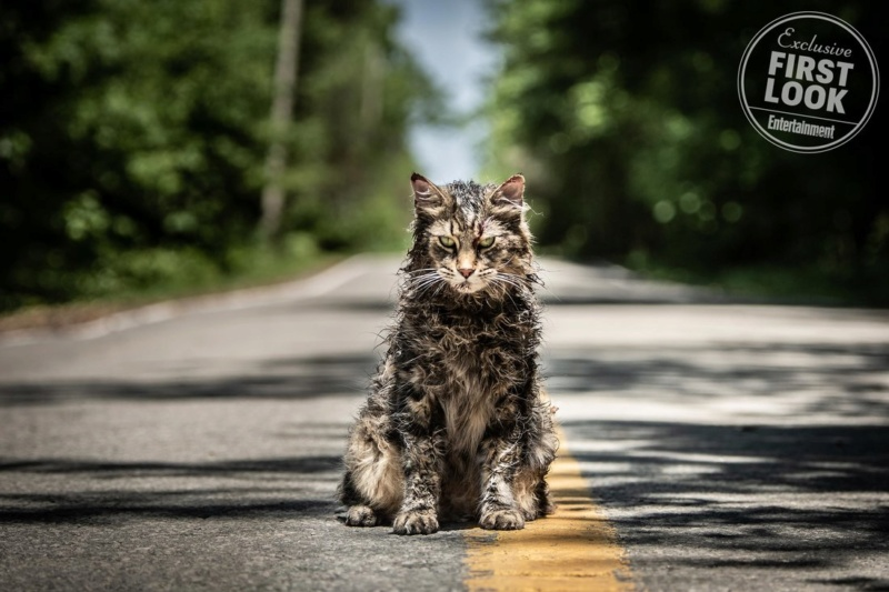 Pet Sematary (Clarke / Seimetz / Lithgow) (April 5, 2019) Pet-se10