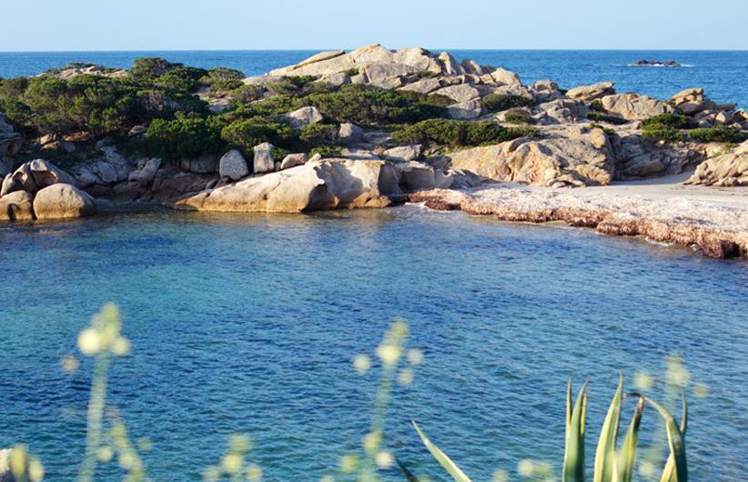 En plein cœur de la Corse 010