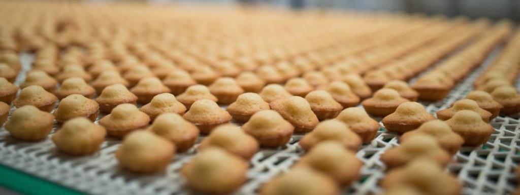 Morbihan : une biscuiterie porte plainte après la découverte de copeaux de bois dans ses gâteaux 16953410